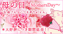 2017 矢場とん母の日ギフト